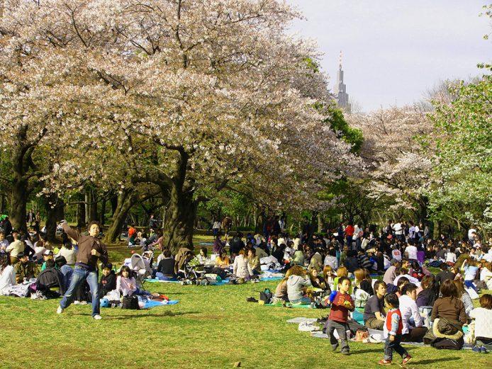 Pasear por Parque de Yoyogi de Tokio