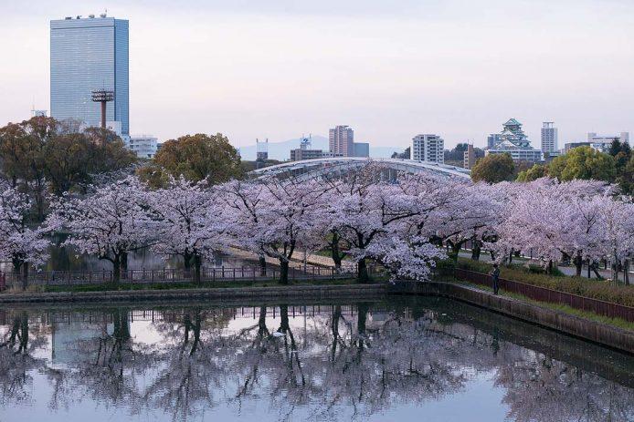 Visitar en Osaka el Kemasakuranomiya