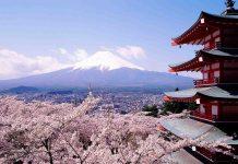 El tiempo en Japón: cuándo es la mejor época para viajar a Japón