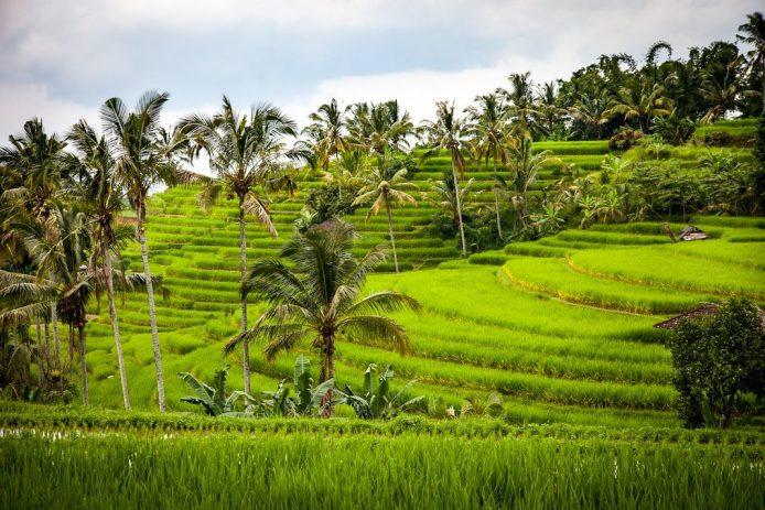 El clima de Bali