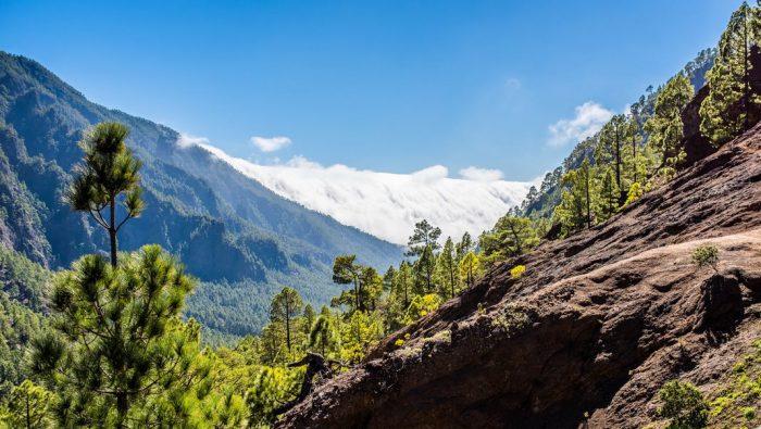 Dónde alojarse en La Palma
