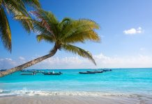 Dónde alojarse en Playa del Carmen