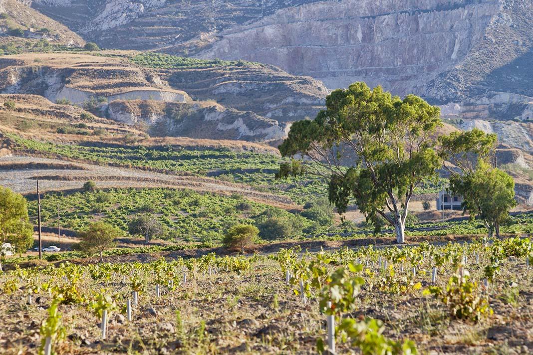 Conoce la Santorini más rural en Exo Gonia
