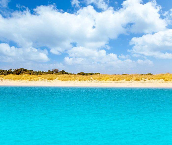 Visitar la playa de S'Alga en Formentera