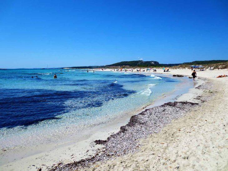 Son Bou es la playa más larga de Menorca