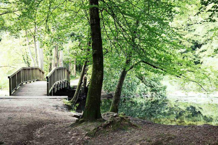 Wandsbek, barrio residencial cerca de zonas verdes